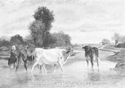 Cattle (Cows Fording a Stream)